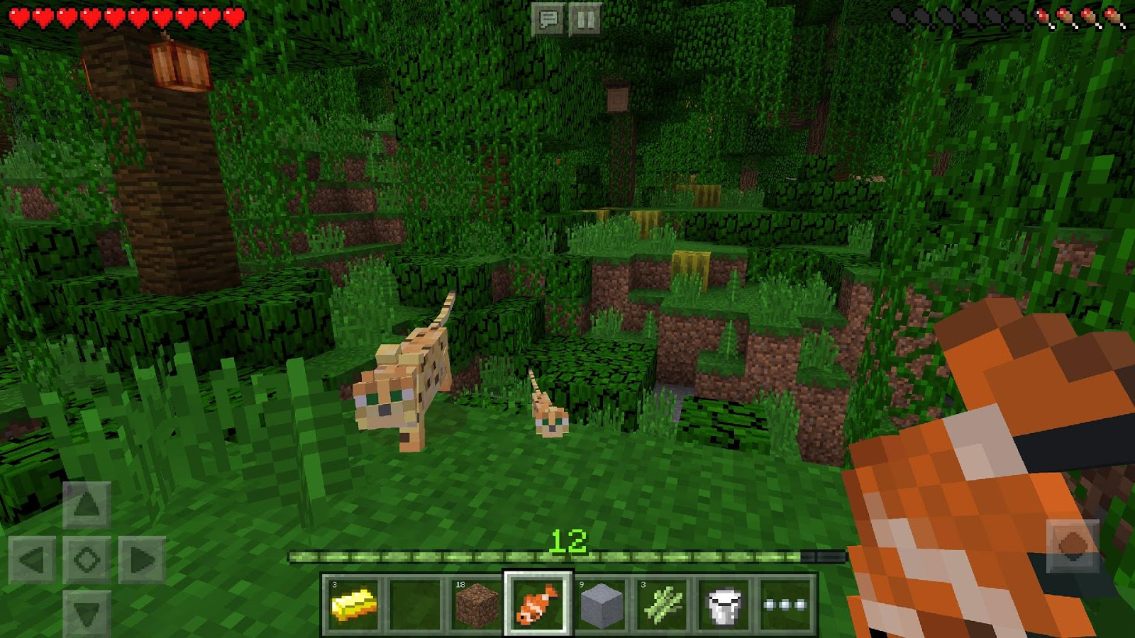 Minecraft Pocket Edition v1.2.11 Full APK