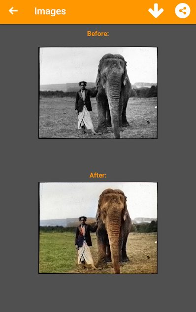 Black and White Photo Colorizer PRO v1.3.92 APK