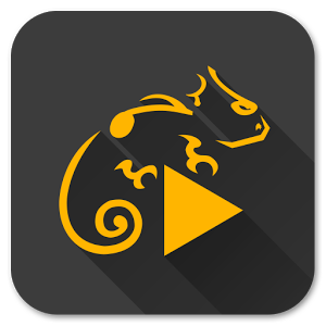 Stellio Music Player v5.9.10 Premium APK